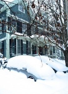 Stopping by Frost's home, mid-snow.