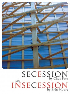 Seccession-Incession-cover-image